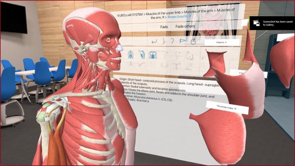 3D Organon VR Anatomy License Key peaphi ss_b4cf826f2406b86e435e5df2be34b79850a117b8.600x338